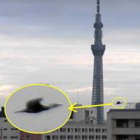 今朝の東京スカイツリー(2021/1/18)