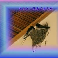 『 直向きに飛来営巣初燕 』物真似575春zqw2205
