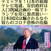 東京都職員16万人は新型コロナに感染しないらしい!満員電車にも乗らないらしい【PCR検査】はヤギ、緑のタヌキ、ただの綿棒でも意図的に感染者に出来る!若者、夜の街を狙い打ち!大嘘つき女帝緑のタヌキ