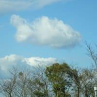 魚の形の雲