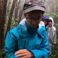 キラキラと、雨粒1滴分の葉っぱと、黒いカエルの子と、色々!