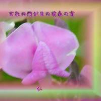 『 玄牝の門が目の前春の宵 』遊行俳句で交心zpx1301