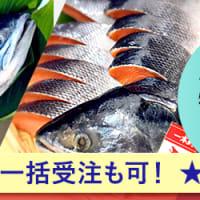 vol.75鮭のお正月レシピ 秋鮭の粕煮
