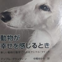動物が幸せを感じるときという本と著者について