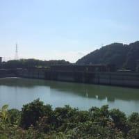 津久井湖では流木の撤去作業中