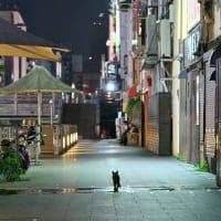 深夜の散歩