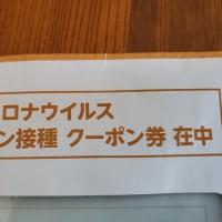 二回目の接種予約が5月21日(金)