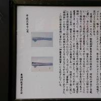 村松虚空蔵尊の霊験木