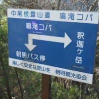 2020年12月2日(水) [鈴鹿]釈迦ヶ岳へ、庵座谷の渓谷美と、急峻なガレ尾根を楽しむ!