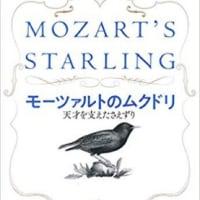 モーツァルトと鳥