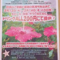 22周年記念キャンペーン『2月12日(火)~2月14日(木)』