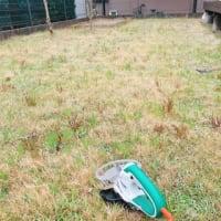 根気あります(笑)芝刈りまくり! ~ももいろハート♡~