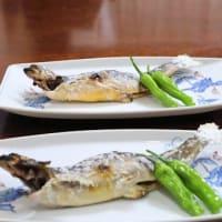 新生姜のかき揚げ・イワナの塩焼き