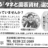 「長谷川新聞ニュース」是非見て下さいね🙋