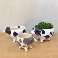 Refrappe さんの もりのうし シリーズ の器と植木鉢