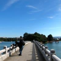 大濠公園 (中央区)