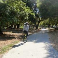久しぶりのMillbraeの遊歩道での一輪車。。マスクがいらなくなったので再開します。