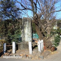 武蔵国国分寺の後継寺院「医王山国分寺」