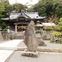 #7064 白濱神社('20早春 伊豆家族旅行_5)