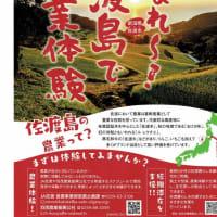 佐渡島で農業体験をしてみませんか?