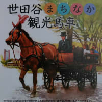JRA馬事公苑の最寄り駅周辺で「世田谷まちなか観光馬車」を運行
