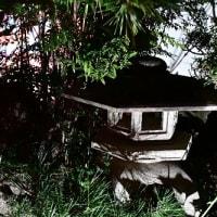 庭のライトアップ