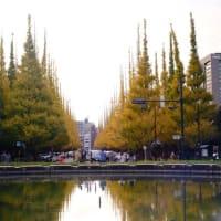 【外苑前】東京港区の神宮外苑いちょう並木を散歩 Walk around Ginkgo Ave. at Jingu-Gaien, Tokyo. 【Osmo Pocket/FUJIFILM X-T4】