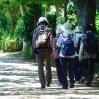 西白井・所沢ふるさとの森から西白井駅まで歩く