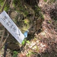 ぼちぼち始動です。美濃松山