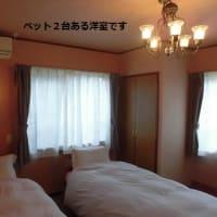 本館・宿~室内画像~