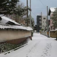 今朝も積雪。寒い。元町をウオーキングしました。