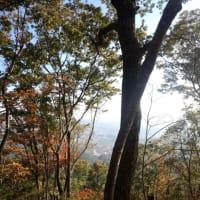 紅葉の太白山