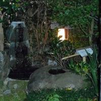 庭の小池と小滝