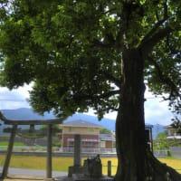奈良県社寺巡りの旅・第327回野口神社/奈良県御所市蛇穴