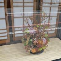 まち歩き中1380 京の通り・富小路通 NO42   和装小物の店