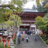 京都一周トレイル.Ⅳ(横高山~仰木峠~江文峠~薬王坂~鞍馬)
