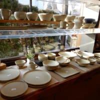 益子のカフェと、いただいたハオルチア。
