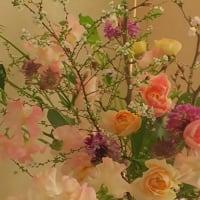 2020「春の花のレッスン」が始まりました🎵
