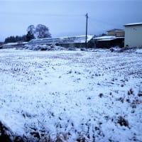 20-11-28 初積雪