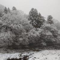 塩原温泉に雪が降りました