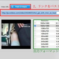 【完全無料】avgle.comから動画をダウンロードしてiPhoneで再生する方法!