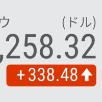 22日 NYダウ平均反発 338ドル高 FOMC想定内で安心感