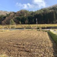 ◻︎1月発送◻︎特別栽培米◻︎