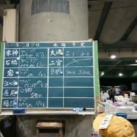 まだ薄暗い小田原早川漁港|株式会社JSフードシステム