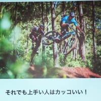 e-bikeとは?