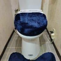 トイレに汚物入れがない・・・