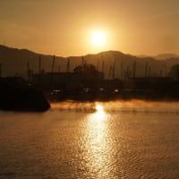 朝の計石港にて