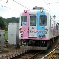 伊賀鉄道 丸山(2009.6.6) 旧近鉄 866F、865F 並び