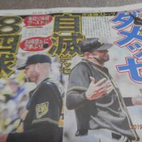 阪神またガンバレ!