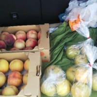 桃の買い出し